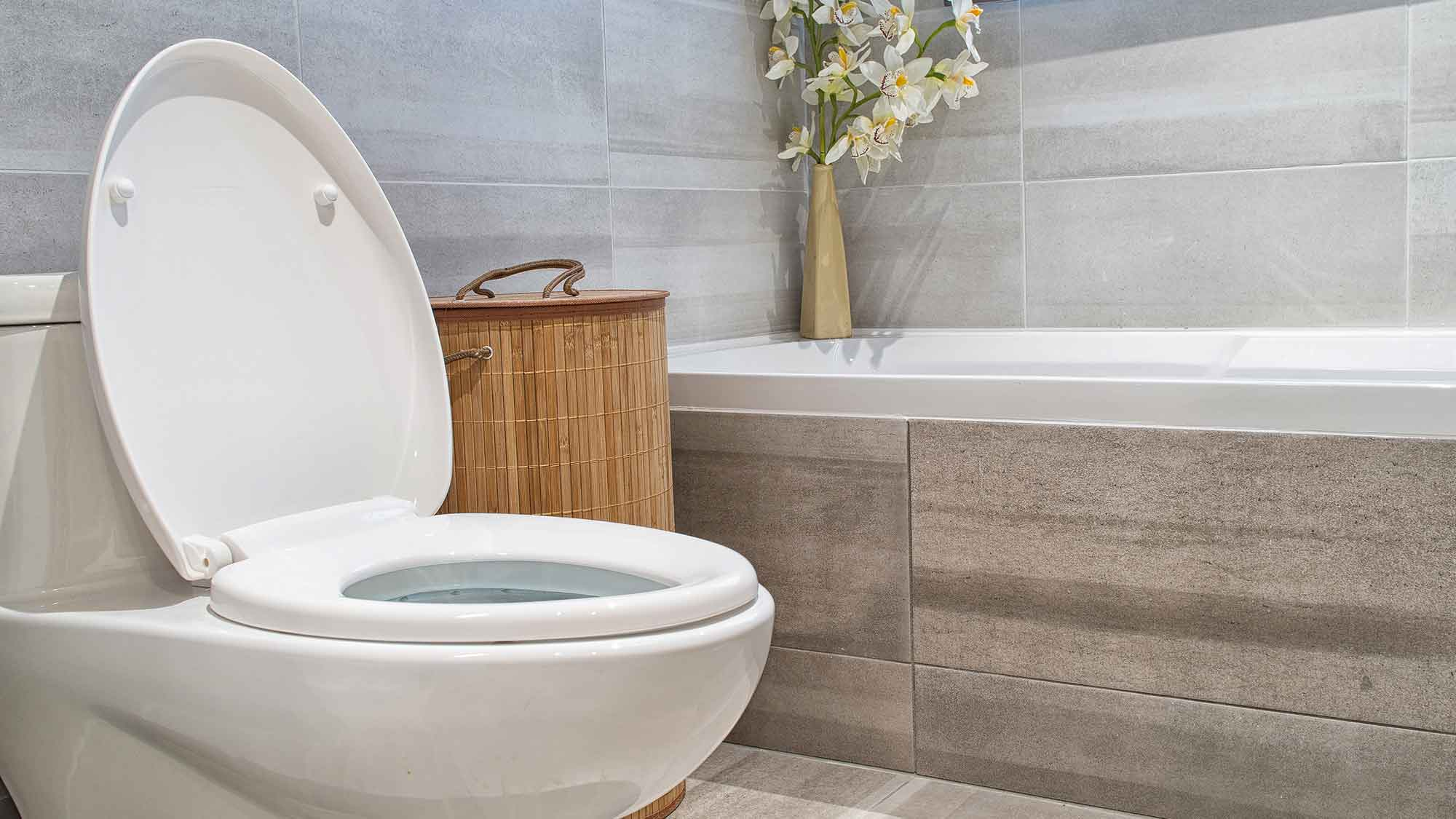 blocked toilet repair essex maintenance leigh on sea bathroom