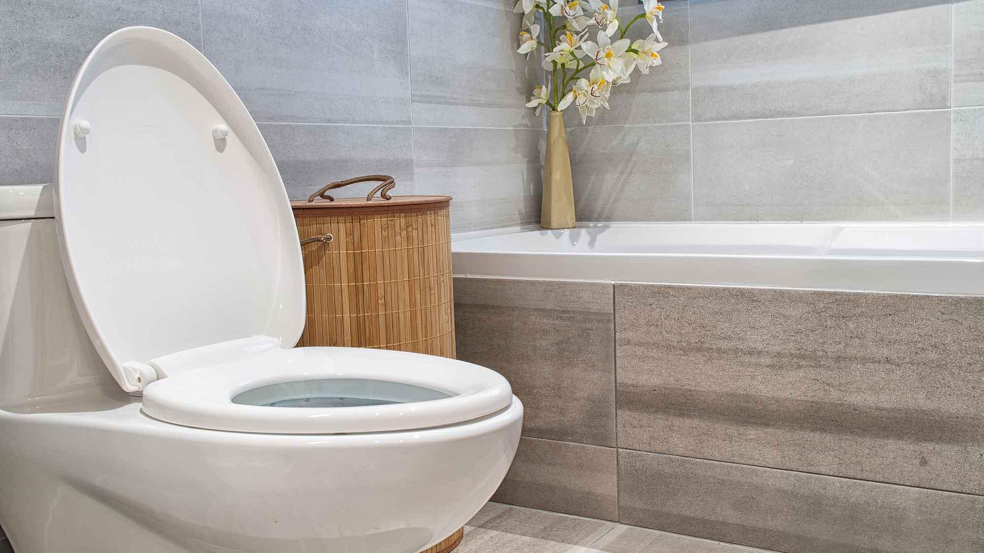 saniflo engineer essex maintenance leigh on sea toilet